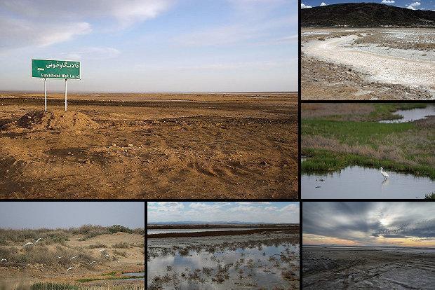 اختصاص اعتبار برای مقابله با خشکسالی در برخی زیستگاه ها وتالاب ها